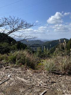 山から見る景色の写真・画像素材[3154795]