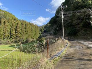 山へと続く道の写真・画像素材[3154796]