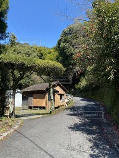 山の途中にある小屋の写真・画像素材[3154798]