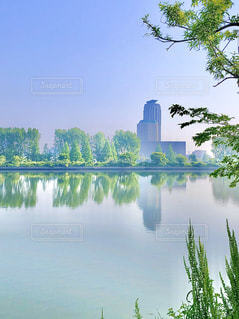 朝もやの河原の写真・画像素材[3157510]