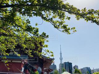 街歩きの写真・画像素材[4349160]