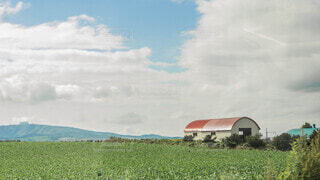 のどかな田園の風景と納屋の写真・画像素材[4035092]