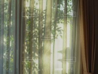 カーテン越しの光の写真・画像素材[3950329]