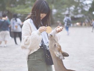 鹿と私の写真・画像素材[3157863]