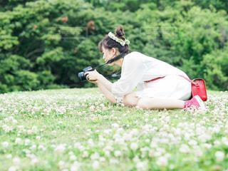 カメラとシロツメクサの写真・画像素材[3163892]