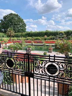 庭園の写真・画像素材[3160723]