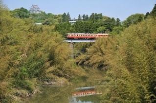 森の近くで列車の線路を下って移動する列車の写真・画像素材[3161677]