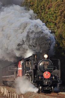 正月限定の蒸気機関車の写真・画像素材[3161697]