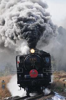 正月限定の蒸気機関車の写真・画像素材[3161703]