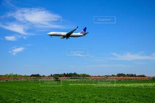 着陸する飛行機の写真・画像素材[3225799]