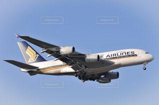 エアバスA380の写真・画像素材[3225997]