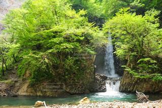 森の中にある滝の写真・画像素材[3236181]