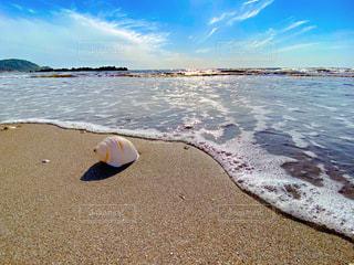 ビーチの写真・画像素材[3327505]