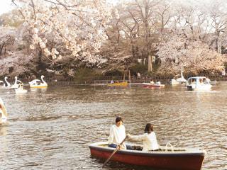 公園ボートの写真・画像素材[3166609]