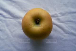 黄色いりんごの写真・画像素材[4614530]