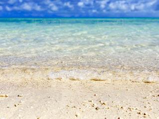 海の写真・画像素材[3169008]