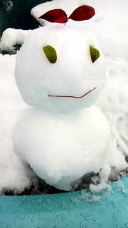 雪の中のホッキョクグマの写真・画像素材[3172960]