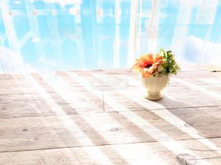 朝の窓辺 カーテン越しの日差しの写真・画像素材[3239649]