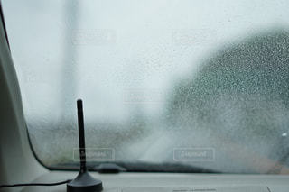 雨の写真・画像素材[340450]