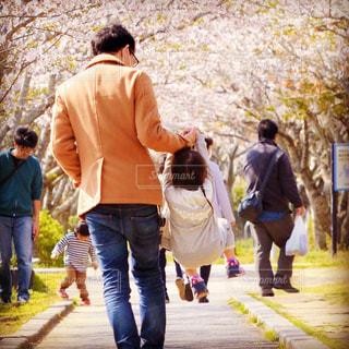 桜咲く春の公園と家族の風景の写真・画像素材[3183103]