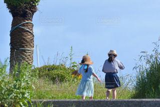 海岸の公園を散歩する子どもたちの写真・画像素材[3229214]