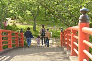 新緑の美しい公園を散歩する親子の写真・画像素材[3232025]