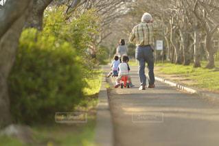 春の公園を散歩する家族の写真・画像素材[3244731]