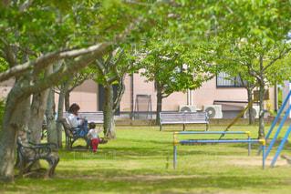 新緑の公園で過ごす家族の写真・画像素材[3254484]