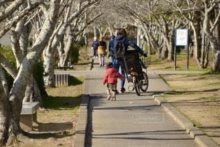 公園を散歩する親子の写真・画像素材[3980737]