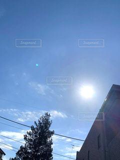 眩しい太陽の写真・画像素材[3177517]