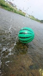 水遊びの写真・画像素材[3181948]