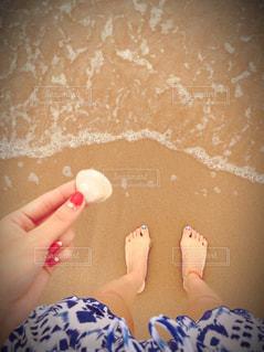 海の写真・画像素材[3186870]
