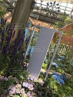ガーデンの写真・画像素材[3197449]