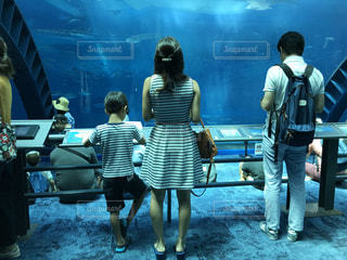 美ら海水族館の写真・画像素材[3197694]