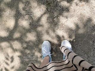 木陰でひと休みの写真・画像素材[3289195]
