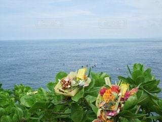 海とお供えものの写真・画像素材[3308125]