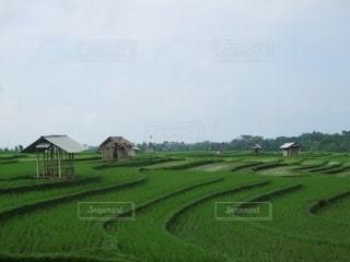 バリ島の風景の写真・画像素材[3308122]