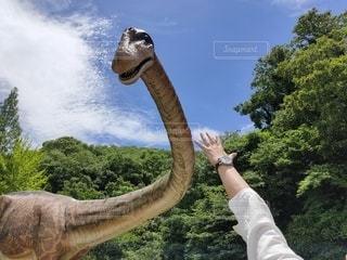 プラキオサウルスが出現の写真・画像素材[3328476]