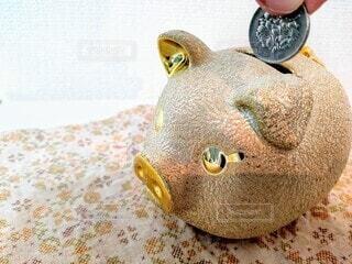 金のブタの貯金箱にお金を入れるの写真・画像素材[3772177]