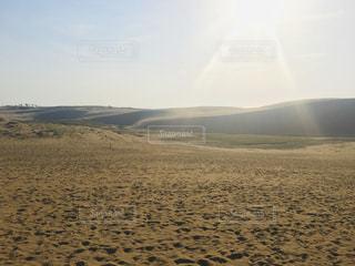 砂丘の写真・画像素材[3193428]