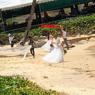 2人の花嫁と撮影隊の写真・画像素材[3450967]