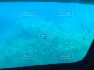 海の中のスクリーンショットの写真・画像素材[3320023]