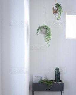 interiorの写真・画像素材[3414954]