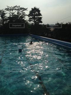 夏の学校のプールの写真・画像素材[3207730]