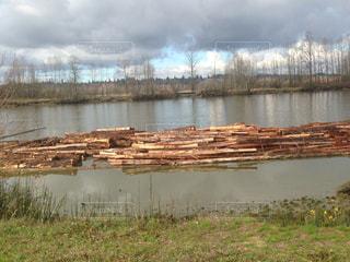 水に浮く材木の写真・画像素材[3207772]