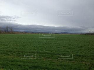 広大な新緑地の写真・画像素材[3207785]
