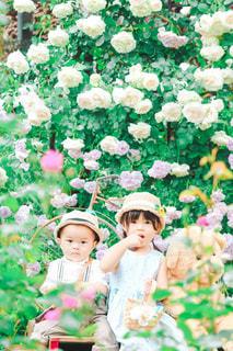 お庭でお話しの写真・画像素材[3222968]