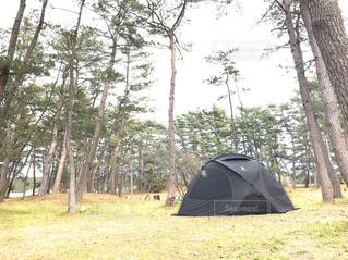 森林キャンプの写真・画像素材[3216139]