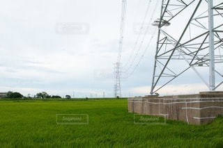 送電塔と田園風景の写真・画像素材[3442012]