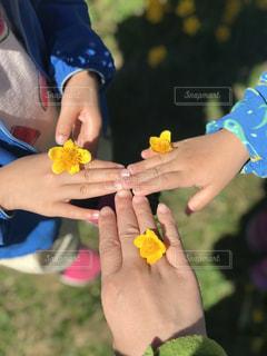 お花で指輪の写真・画像素材[3203281]